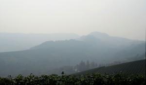 Barolo Fog Panorama