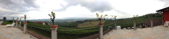 La terrazza. The best place to drink Barolo!
