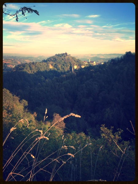 Roero landscape
