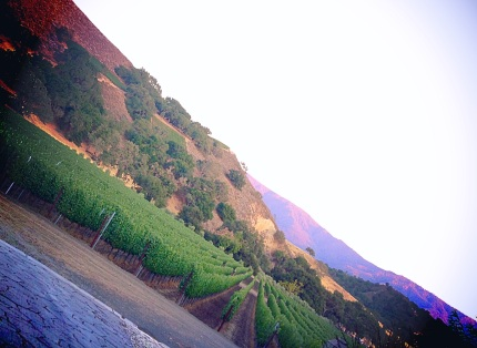 Happy Canyon, as seen from Grassini Family Vineyards on July 11, 2014.