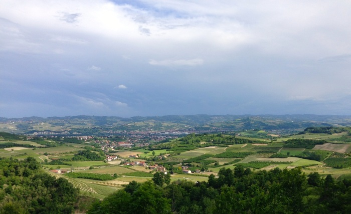 Roero Vineyards, taken from the famous Valmaggiore Vineyard. May 13, 2014.