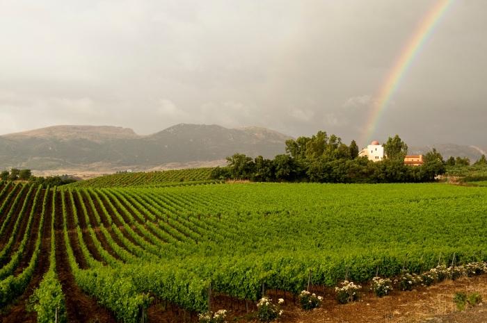 Agrirelais_con_arcobaleno