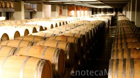 Their barrel room houses no less than 1,200 barrels.