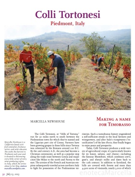 Colli Tortonesi article in Sommelier Journal