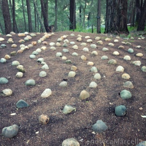 The Meadowood Rock Labyrinth, at the Wine Writers Symposium last February.