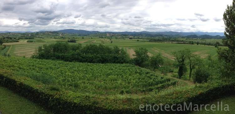 Looking out towards Slovenia from Collio.