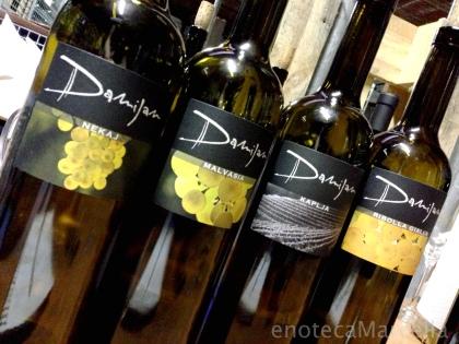 Damijan's wines.