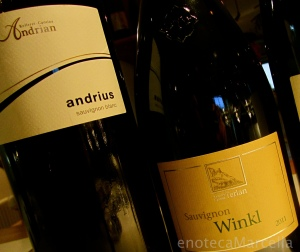 Winkl & Andrius
