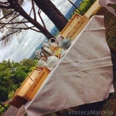 tea time in the vineyard