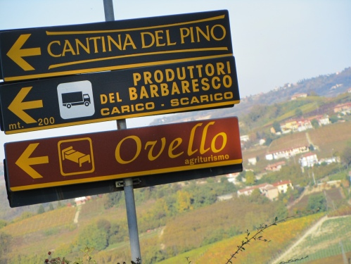 Entering the Barbaresco village ...