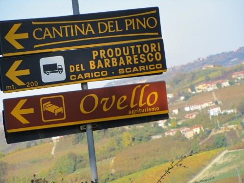 Entering the Barbaresco village ...